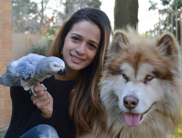 Woman Takes Cute Little Puppy, One Year Later It Becomes Something Else