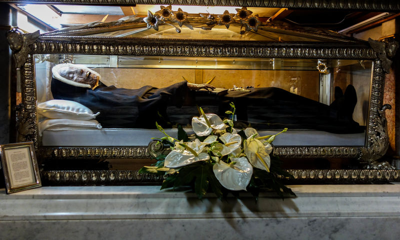 Noone Can Explain Why These Two Saints Won't Decompose